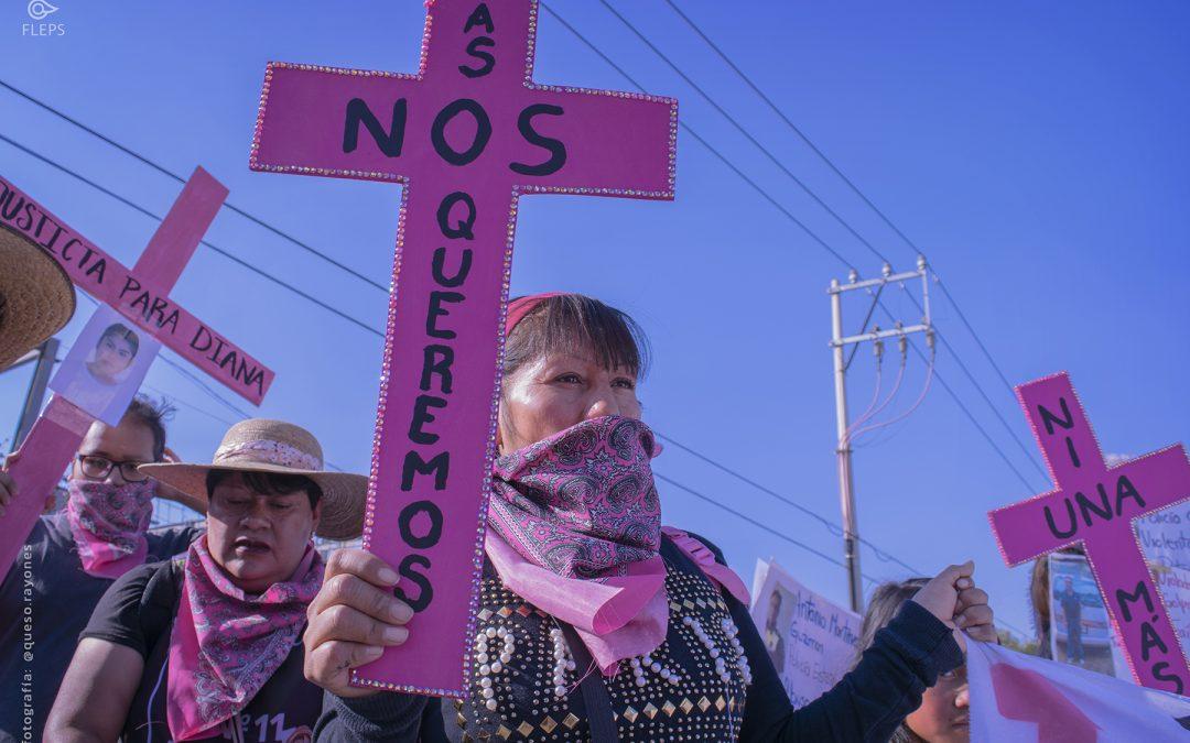 Mujeres defensoras de derechos humanos  frente a la violencia en México
